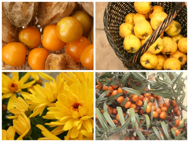 Physalis, Quitten, Chrysanthemen, Sanddorn